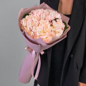 5 Розовых Гортензий в упаковке фото