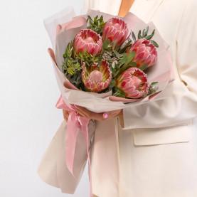 5 Розовых Протей фото
