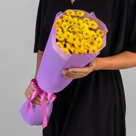 5 Желтых Сантини Ромашка фото