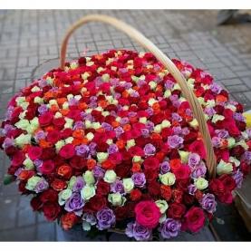 501 Роза Mix (40 см.) фото