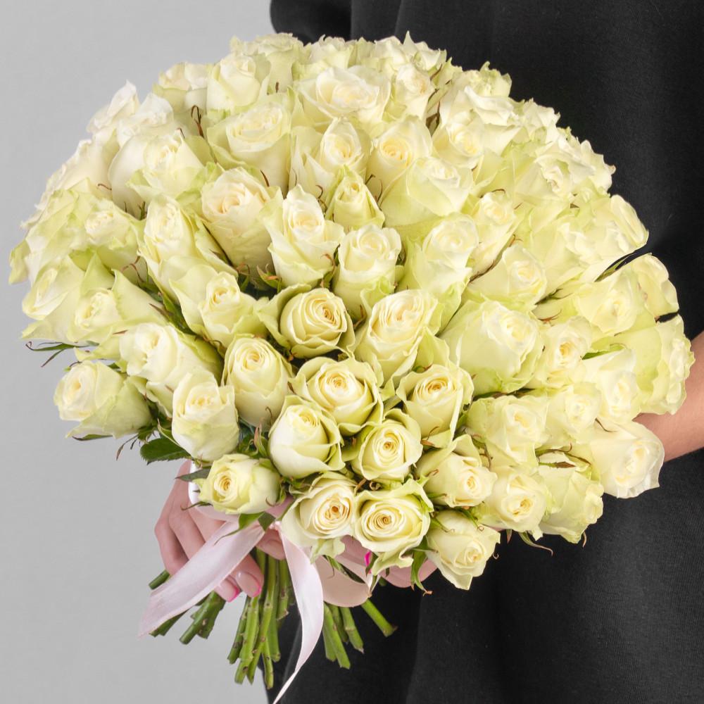51 Белая Роза фото