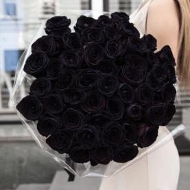 51 Черная роза (70 см.) фото