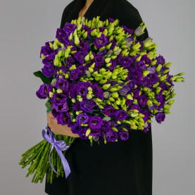51 Фиолетовая Эустома фото