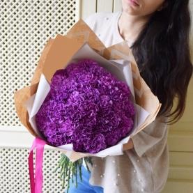 51 Фиолетовая Гвоздика фото