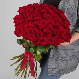 51 Красная Роза (60 см.) фото