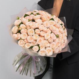 51 Кустовая Пионовидная Кремовая Роза (50 см.) фото