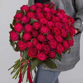 51 Малиновая Роза (60 см.) фото
