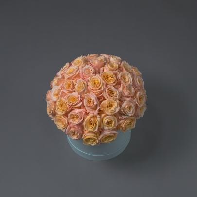 51 Персиковая Роза в коробке фото