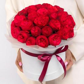 51 Пионовидная Красная Роза (40 см.) в коробке фото