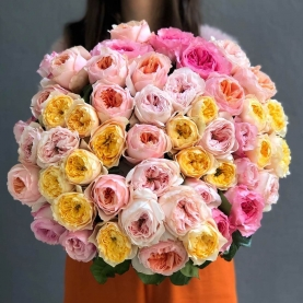51 Разноцветная Пионовидная Роза (50/60 см.) фото