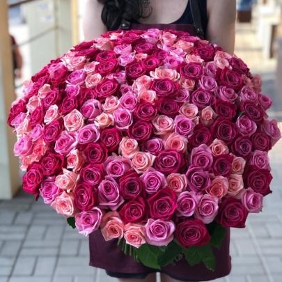 101 Разноцветная Розовая Роза (60 см.)