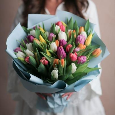 51 Разноцветный Тюльпан фото