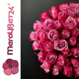 51 Роза Deep Purpule (50/60 см.) фото