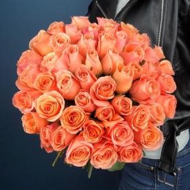 51 Роза Lady Margaret фото