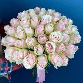 49 роз Pink Athena (40 см.) фото
