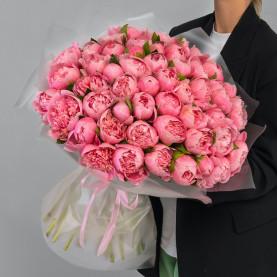 51 Розовый Пион фото