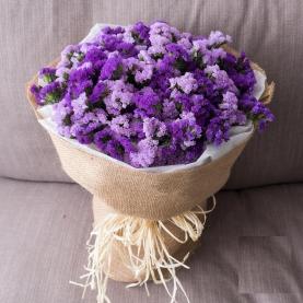 51 Сиренево-Фиолетовая Статица фото
