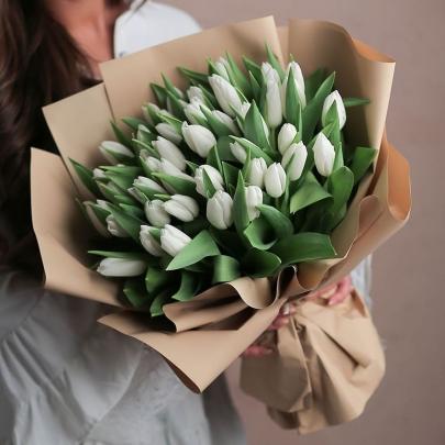 51 Тюльпан белый фото