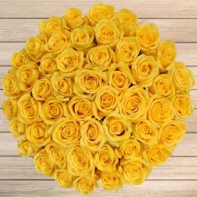 51 Желтая Роза Эквадор (50/60 см.) фото