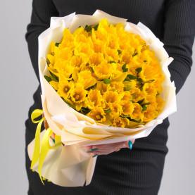51 Желтый Нарцисс фото