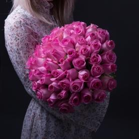 55 Розовых Роз фото