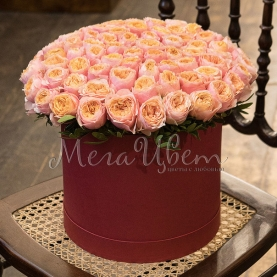 65 Розовых Роз Пионовидных в шляпной коробке фото