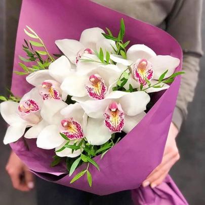 7 Белых Орхидей фото