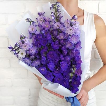 7 Фиолетовых Дельфиниумов фото