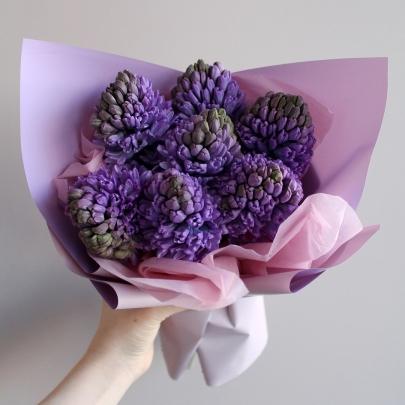 7 Фиолетовых Гиацинтов фото