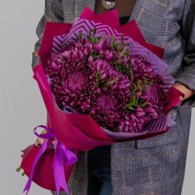 7 Фиолетовых Хризантем Бигуди фото