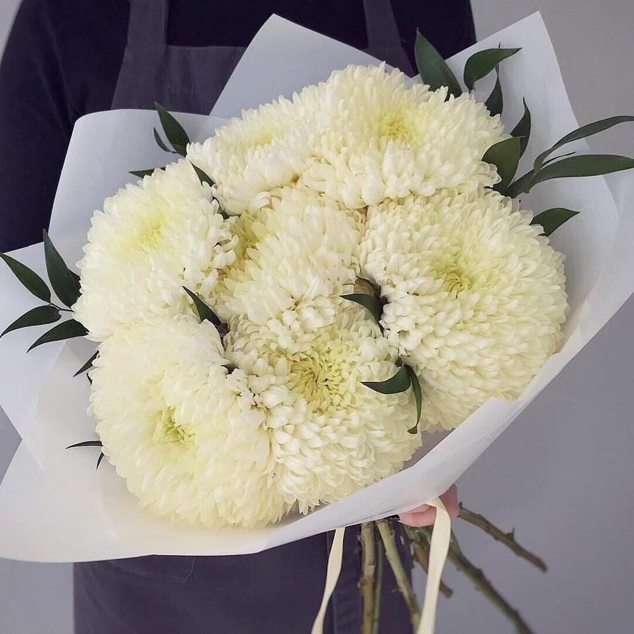 7 Кремовых Хризантем Бигуди фото