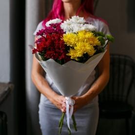 7 Разноцветных Кустовых Хризантем фото