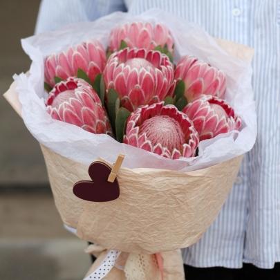 7 Розовых Протей фото