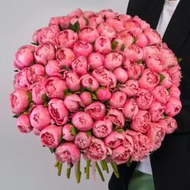 75 Розовых Пионов фото
