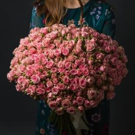 75 Кустовых Розовых Роз (60 см.) фото