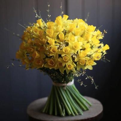 75 Желтых Нарциссов фото