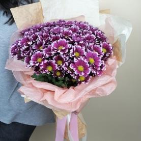 9 Ярких Кустовых Хризантем фото