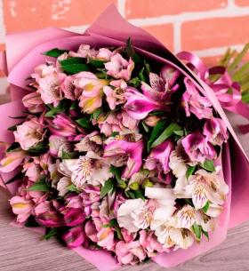15 Бело-Розовых Альстромерий