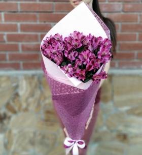 9 Фиолетовых Альстромерий