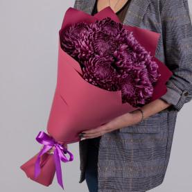 9 Фиолетовых Хризантем Бигуди фото