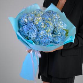 9 Голубых Гортензий фото