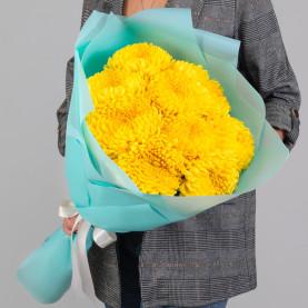 9 Желтых Хризантем Бигуди фото