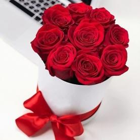 9 Красных Роз в коробке фото