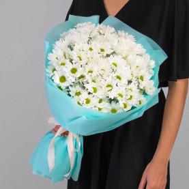 9 Кустовых Хризантем Ромашка Белых фото