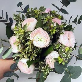 9 Нежно-Розовых Ранункулюсов фото