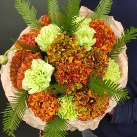 9 Оранжевых Махровых Ранункулюсов фото