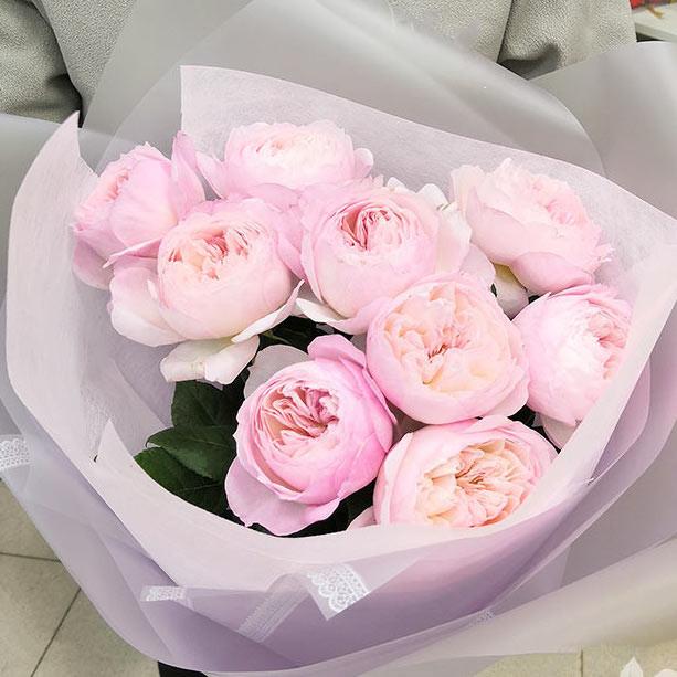 9 Роз Pink Ohara (50 см.) фото