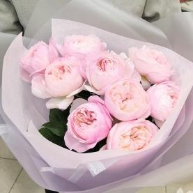 9 Роз Pink Ohara (50/60 см.) фото