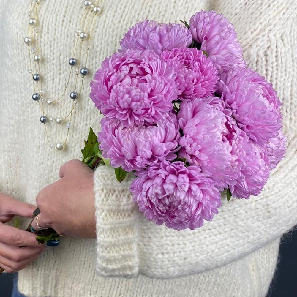 9 Розовых Пионовидных Астр фото