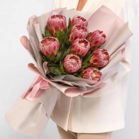 9 Розовых Протей фото